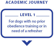 Academic Journey 16 Jan-13