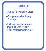 Level 1 Puppy Group classes