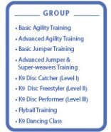 Level 2 Dogsports Group classes