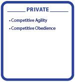 Level 3 Competitive Private classes