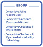 Level 3 Competitive Group classes